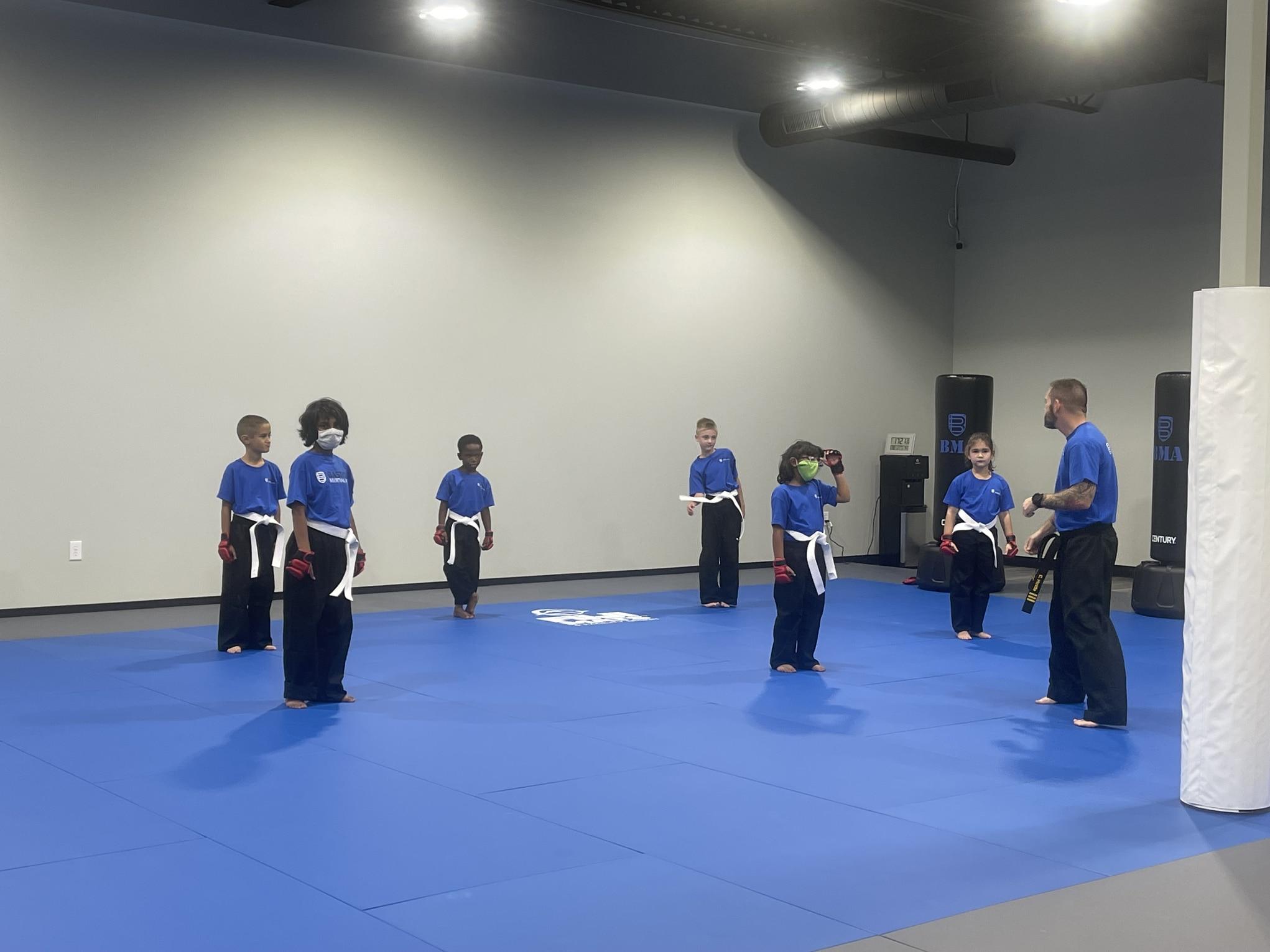 Bastion Martial Arts Blog